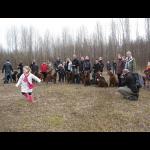 voorjaarswandeling-met-honden